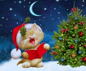 Santa Kitten Singing Christmas Carols Wallpaper