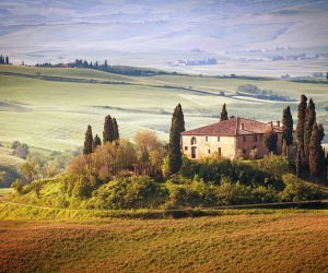Summer in Tuscany, Italy Wallpaper