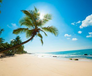 Beautiful Sunny Beach Wallpaper