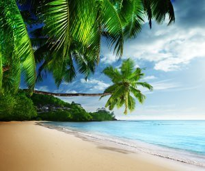 Tropical Paradise Beach Wallpaper