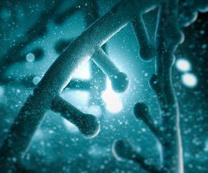 DNA Molecular Model Wallpaper