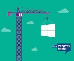 Windows Insider Wallpaper