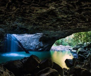 Springbrook National Park Wallpaper